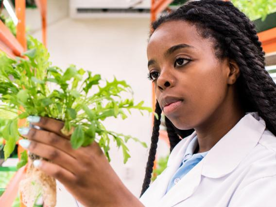 A female student studies a plant in a lab.