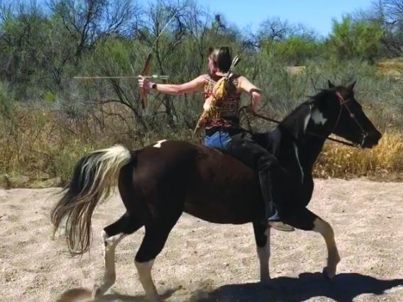 Netzin Steklis on horse