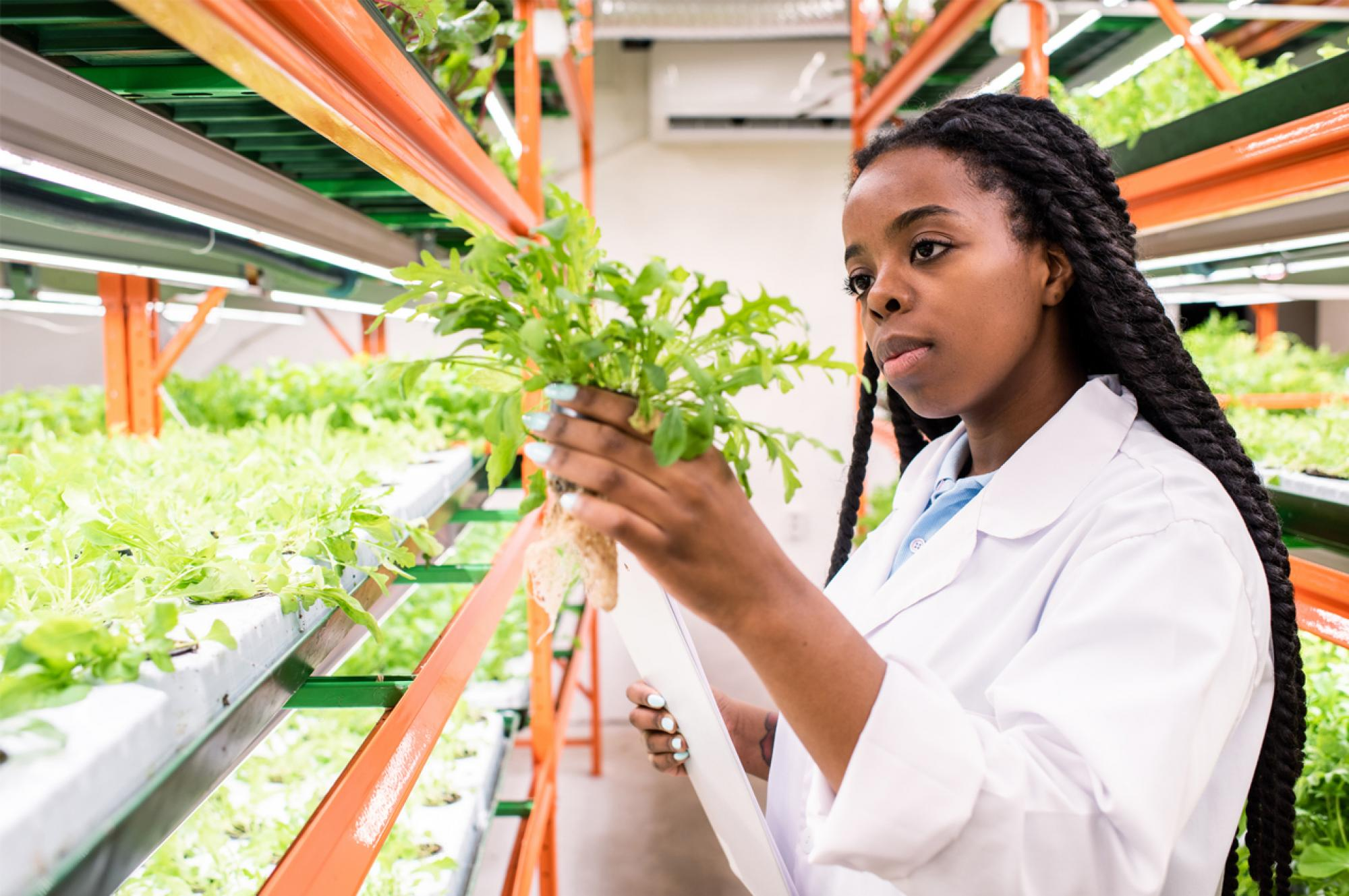 A student examines a plant in a lab.