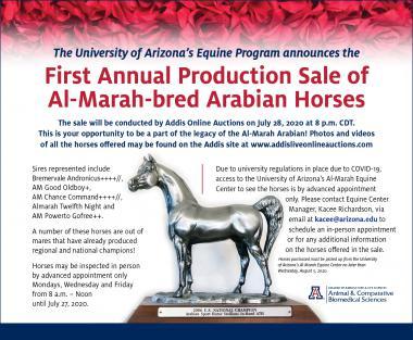 2020 Al Marah Sale